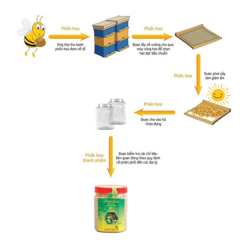Quy trình thu thập phấn hoa ong