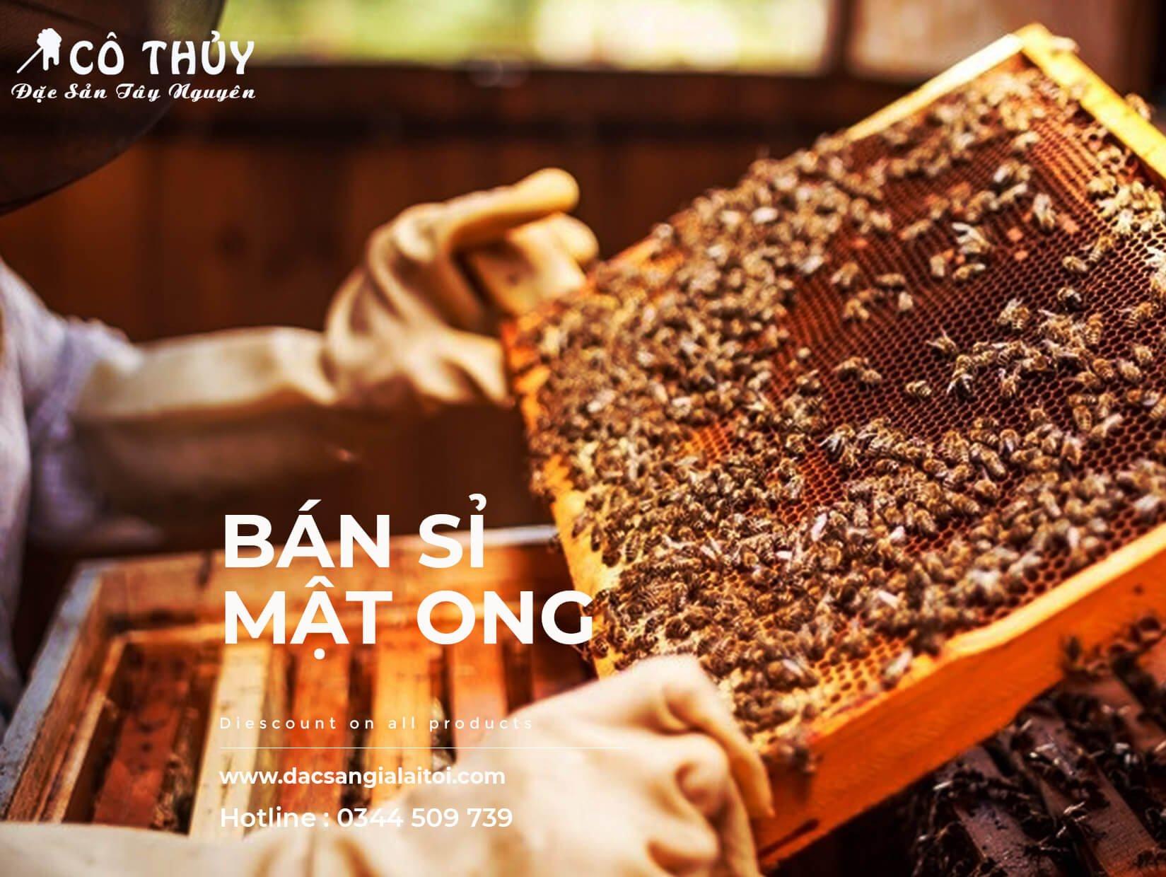 Mua mật ong nguyên chất ở đâu tphcm