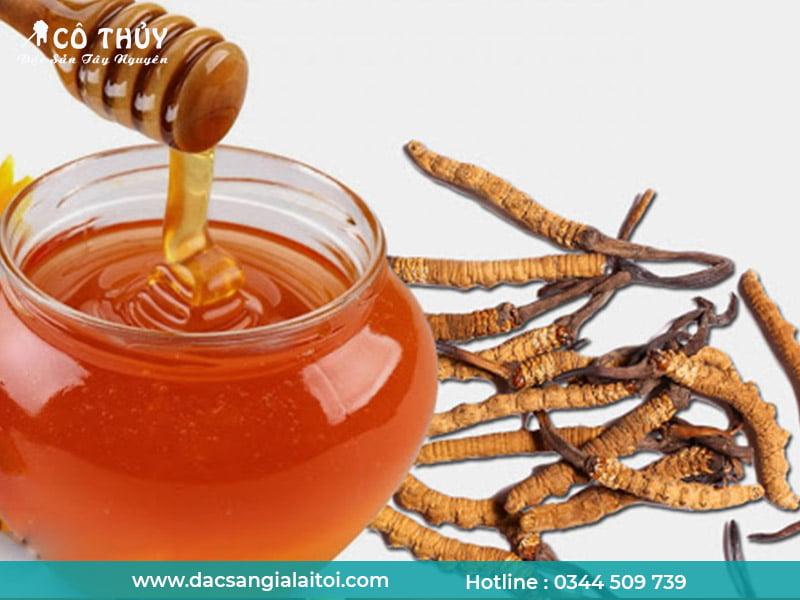 Mật ong đông trùng hạ thảo có tác dụng gì