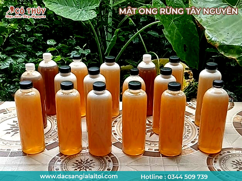 Mật ong rừng Tây Nguyên - Ong khoái nguyên chất 100%