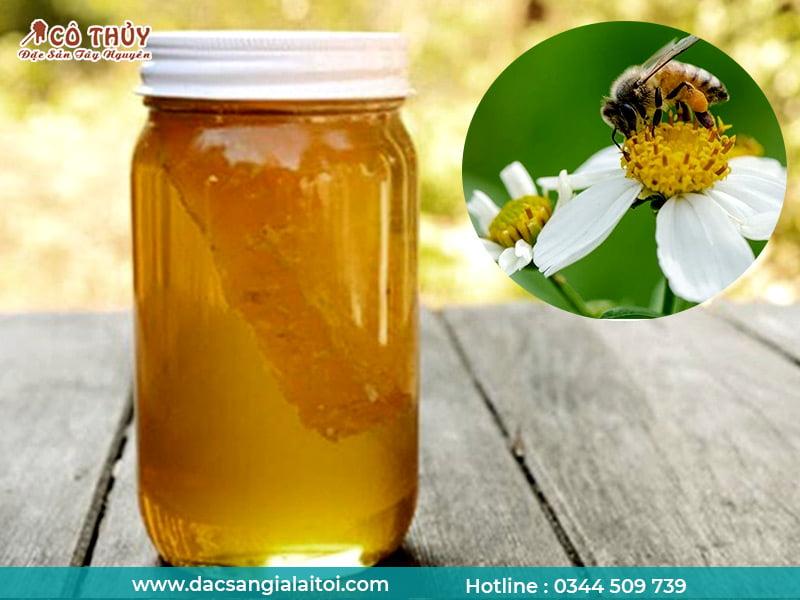 Mật ong hoa xuyến chi (cỏ kim) có tốt không ?